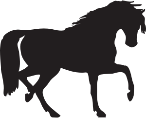 johnny-automatic-horse-silhouette